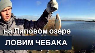 Рыбалка на липовом озере