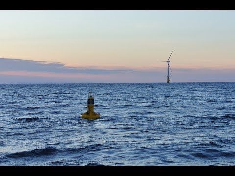 Aanderaa MOTUS wave buoys deployment