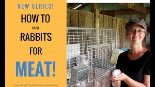 How to Raise Meat Rabbits