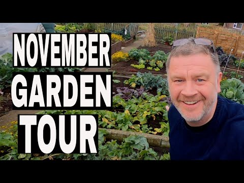 Allotment Garden Tour November 2018. Gardening Allotment walk through