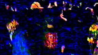 The Ladybird Unition - Hoedown '95 - Position #3