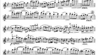 Goldmark, Karl mvt2+3(begin) violinc. Andante + Moderato-Allegretto