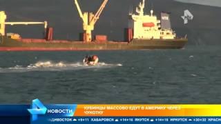 Кубинские мигранты пытаются добраться в США через Чукотку