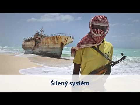 Tomio Okamura: Šílený systém