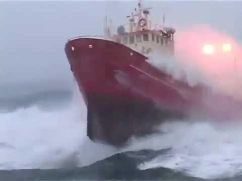 Immagine testo significato Nel naufragio