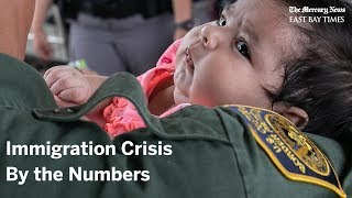 Immigration crisis by the numbers