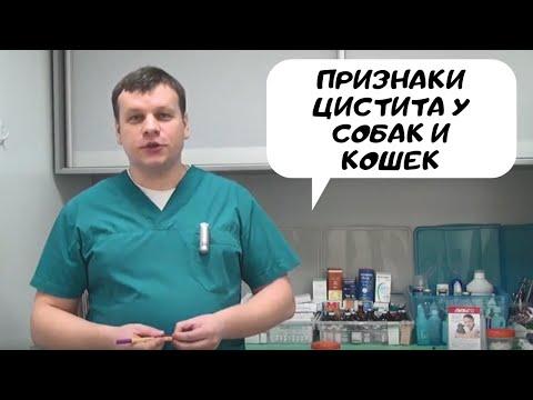 Витапрост наличие в аптеках москвы