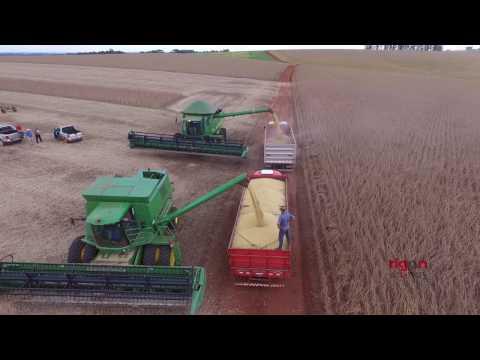 Colheita de soja da safra 2017