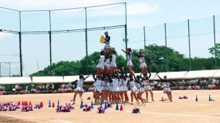 広島県瀬戸内高校体育祭チア2017