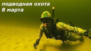 Подводная охота 8 марта 2014 года