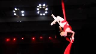 гимнастка на полотнах