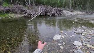Река милоградовка приморский край рыбалка