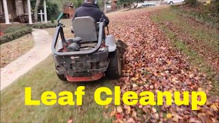 Leaf Clean Up Pricing, Tips, and Equipment
