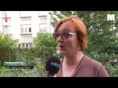 Reportage - Atelier Groot Eiland