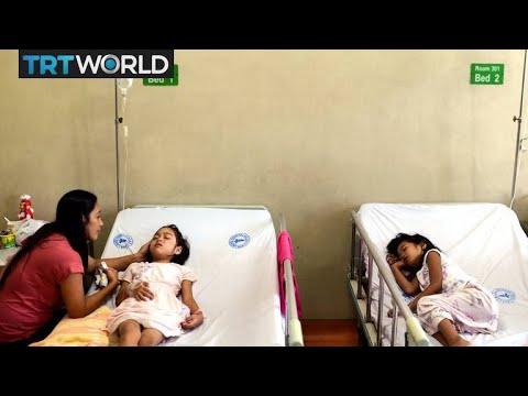 Dengue Fever: Scientists found a solution to fight Dengue