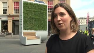 City-Trees try to combat air pollution - STV News report