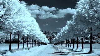 Paul Mauriat - Душа на двоих. Красивая инструментальная музыка для души