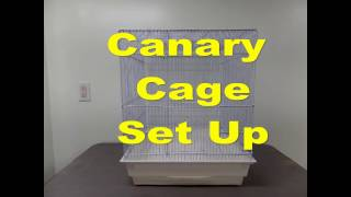 How to Set Up a Canary Cage