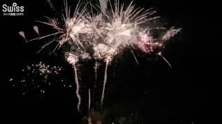 スイスの豪華な建国記念日!ロールでの花火大会【スイス情報.com】