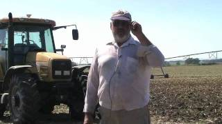 Barley & Oats as Cover Crops with No-Tiller Allan Brooks