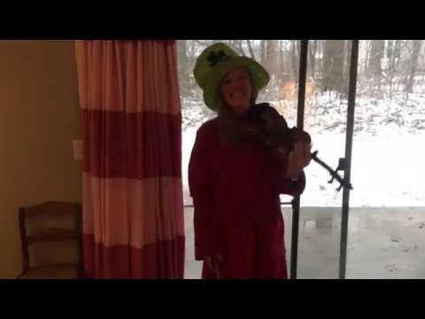"""Honeysuckle Hornpipe"" (Irish fiddle) :)"