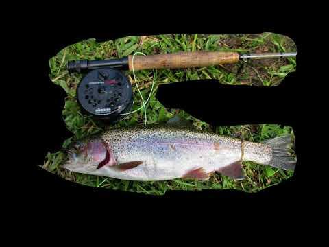 Pesca de Trutas - Pesca na Montanha