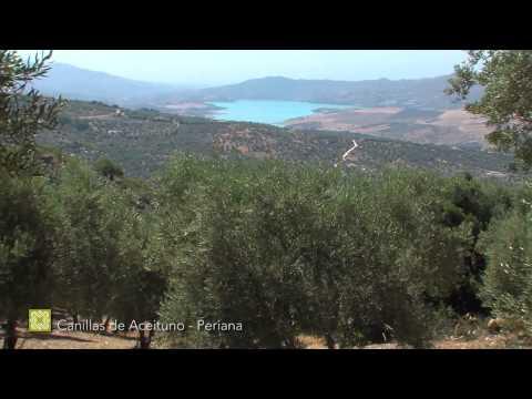 Grand Sentier de Málaga. Étape 8: Canillas de Aceituno - Periana ( français )