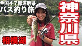 全国バス釣り旅#8神奈川県相模湖で爆発!!ついに関東入り☆