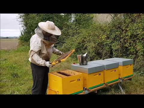 , title : 'Formation 1 ouvrir une ruche, lecture des cadres.