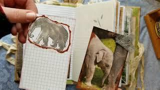Destinys Journal, The Gentle Giant Elephant Journal.