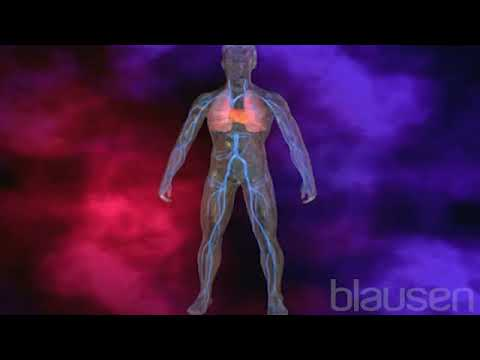 Heart Function - An Information Shared by Dr. Anthony Jones