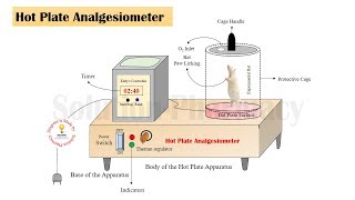 Eddy's hot plate analgesiometer- general construction and parts- Animation (No Audio)