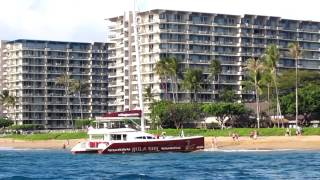 preview picture of video 'The Whaler on Kaanapali Beach'