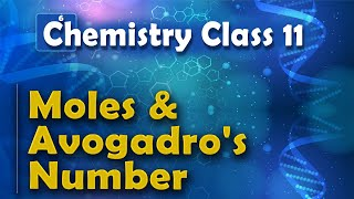 Moles and Avogadro's Number - Basic Concepts of Chemistry - Chemistry Class 11