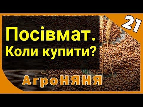 Когда покупать семена? АгроНЯНЯ 21