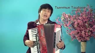 Тынчтык Ташбаев  Теним бар