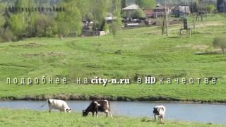 Под Новокузнецком разрез съедает деревню
