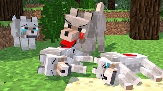 Top 5 Minecraft Life (Minecraft Animation) Wolf Life   Silverfish Life   Squid Life   Fish Life
