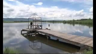 Рыбалка в алтайском крае и на что ловить