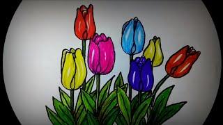 3000 Gambar Bunga Tulip Untuk Anak Tk Hd Paling Baru Infobaru