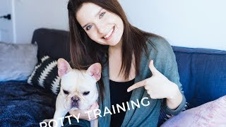 How To Housebreak And Crate Train A Puppy In 3 Days! | In Steps! | Advice From A Dog Trainer