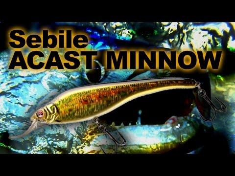 Sebile Acast Minnow Medium Lip 95 videó