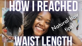 How to Grow Waist Length 4c Natural Hair (My Hair Journey, Current Routine, Products)