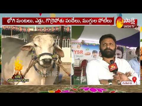 CM YS Jagan To Attend Sankranthi Celebrations At Gudivada -Sakshi TV
