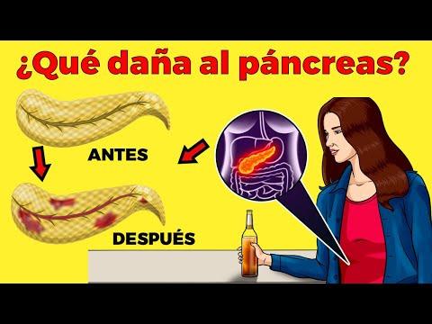 9 Hábitos Que Deberías Evitar Para Mantener Tu Páncreas Sano