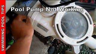 Pool Pump not Working, Part 1- Pump not Priming