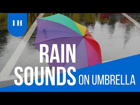 Raining sound : sound of raining on a yurt: For Relaxing