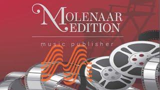 Pocahontas - Alan Menken/St. Schwartz/Arr. Hans van der Heide