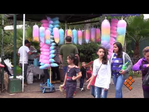 Tradición, algodón de azúcar en el Zoológico de Morelia