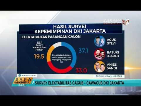 Hasil Survei Pilkada DKI 2017